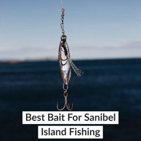 Best Bait For Sanibel Island Fishing