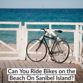 Can You Ride Bikes on the Beach On Sanibel Island
