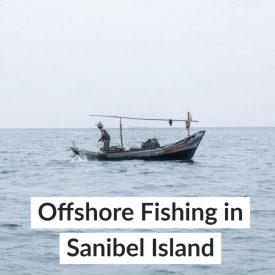 Offshore Fishing in Sanibel Island