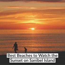 Best Beaches to Watch the Sunset on Sanibel Island