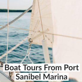 Boat Tours From Port Sanibel Marina