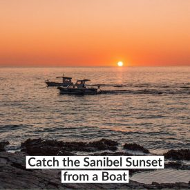 Catch the Sanibel Sunset from a Boat