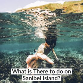 What is There to do on Sanibel Island