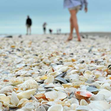 best-ways-to-get-to-sanibel-island-from-fort-myers