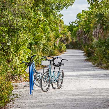 what-is-the-best-time-to-go-to-sanibel-island